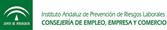 Instituto Andaluz de Prevención de Riscos Laborais